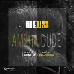 Weusi - Amsha Dude